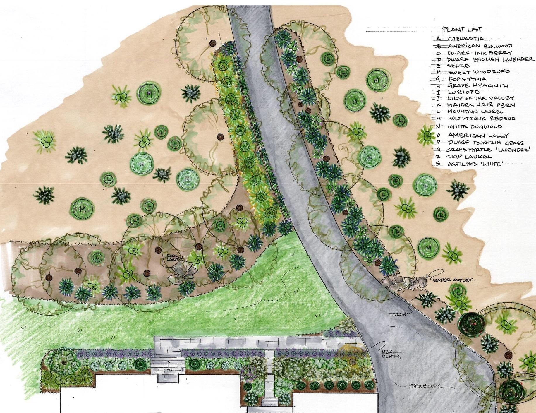 Residential Woodland garden