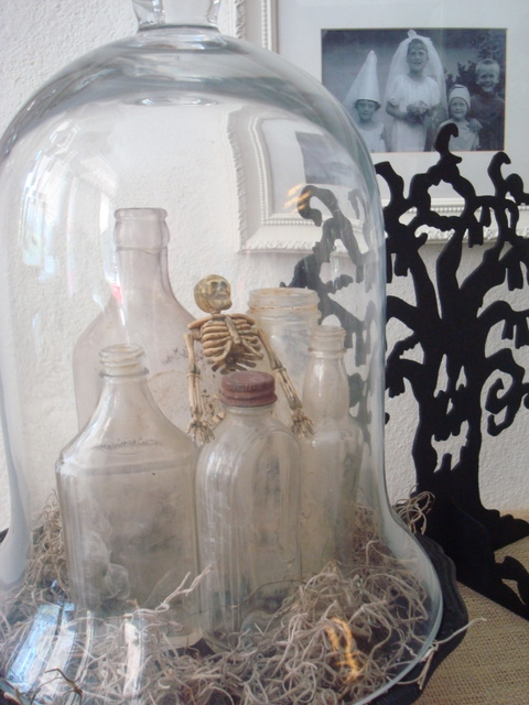 I love this glass cloche set up.  Just enough spook with a lot of chicness.