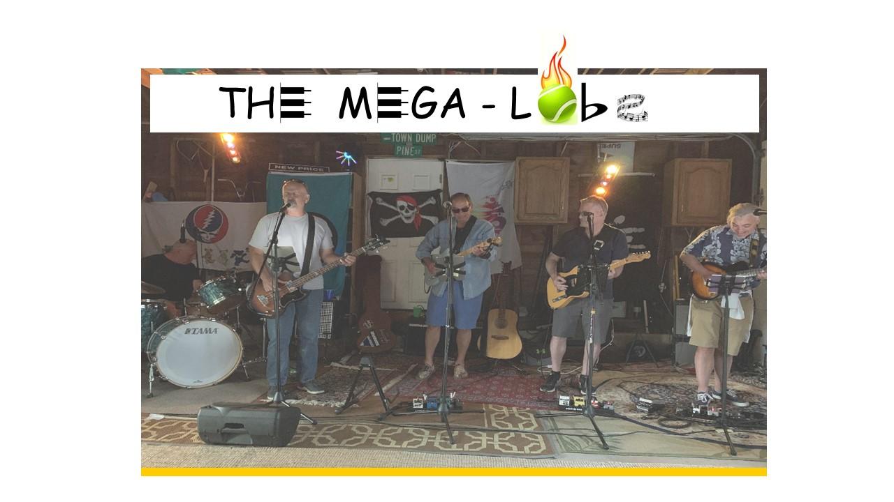 Mega-Lobs Porchfest.jpg