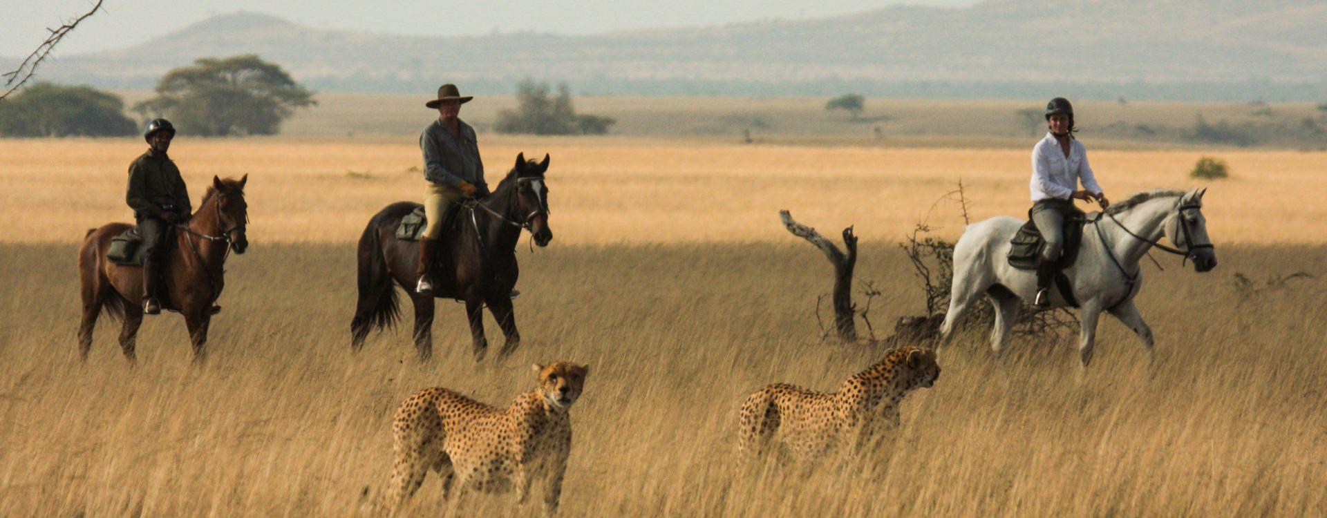 olDonyoLodge-Horse-Safari-Experience-GreatPlainsConservation-43.jpg