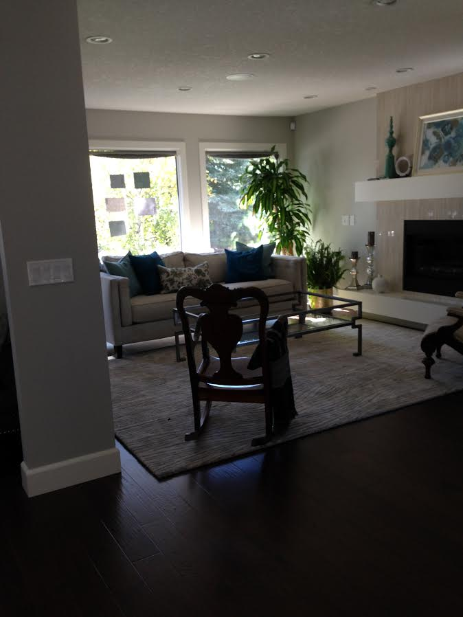 living room before (home 1)