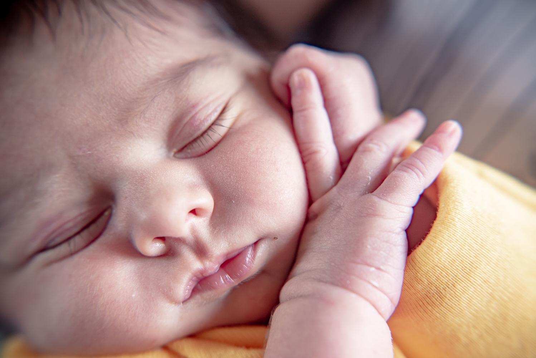 Newborn sleeping beauty in Loveland, Colorado