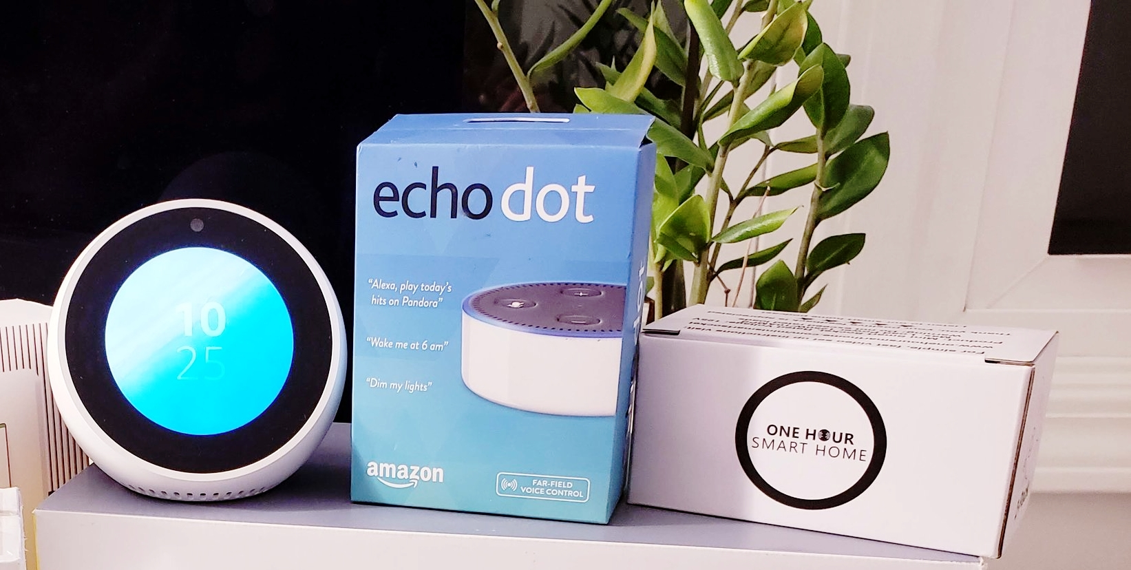 Alexa Spotify Commands Make Listening to Music Easy & Seamless