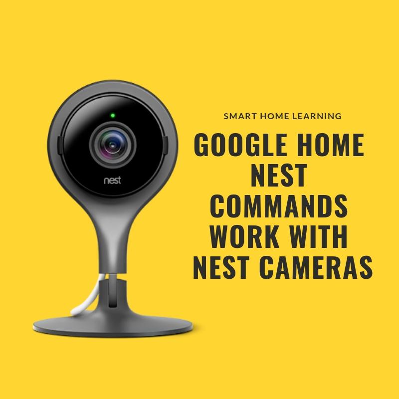 Google Home Nest Commands : View your live stream from your  nest cam  or  nest cam outdoors  on your google home hub.