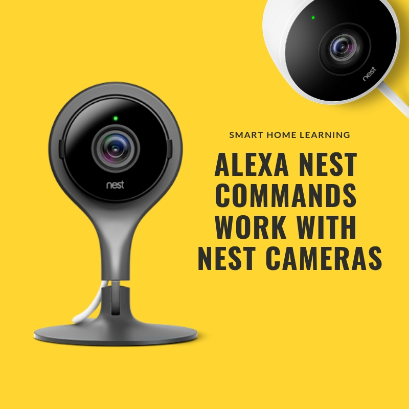 Alexa Nest Commands : View your live stream from your  nest cam  or  nest cam outdoors  on your  Echo Show or Echo Spot .
