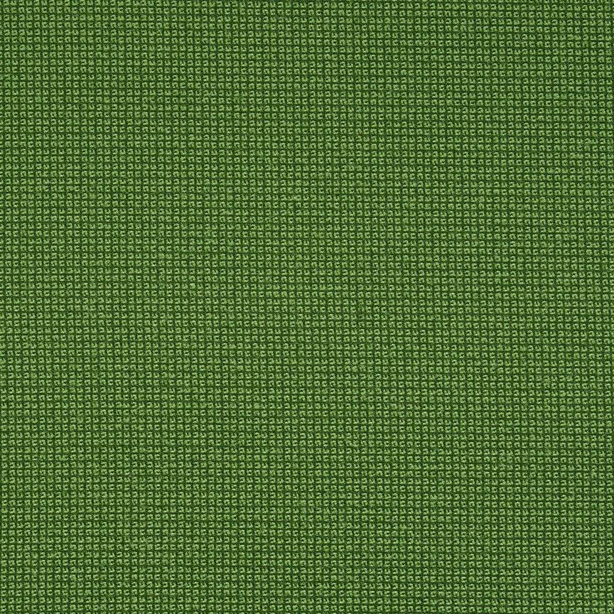 020 Alligator