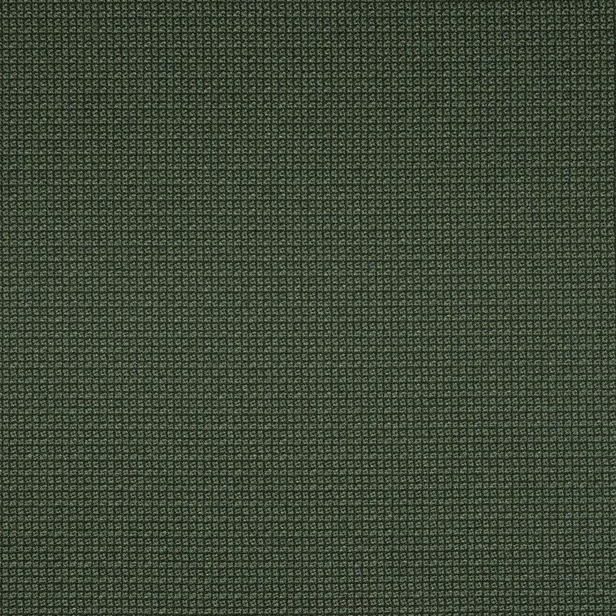 022 Bonsai