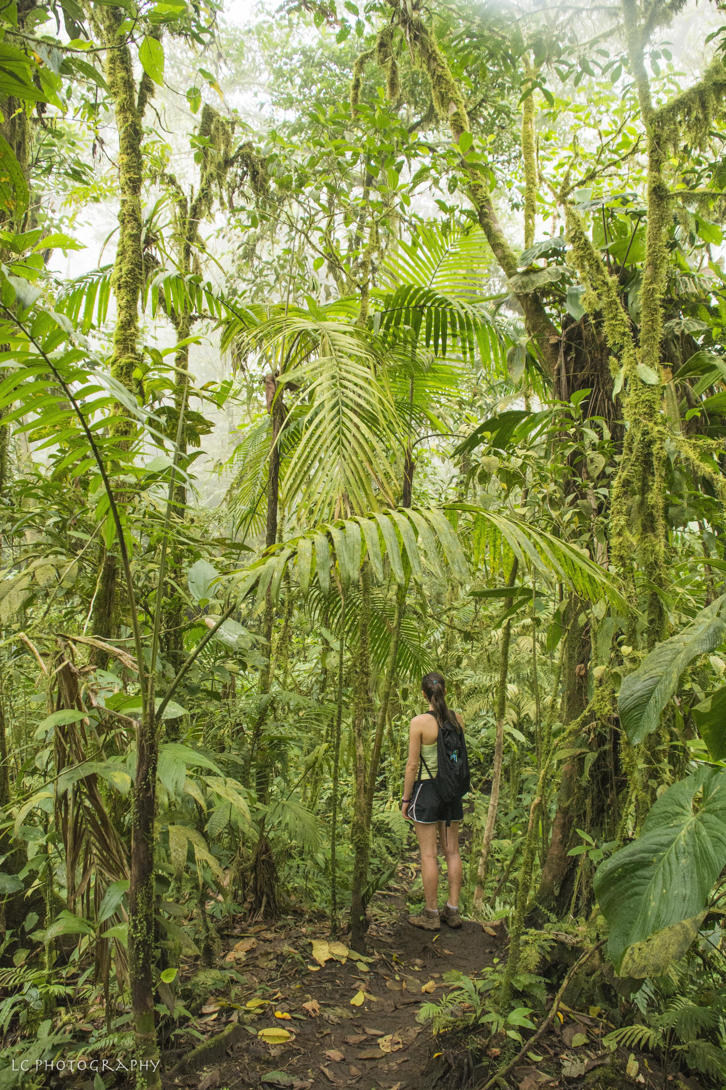 Costa Rica-0314.jpg
