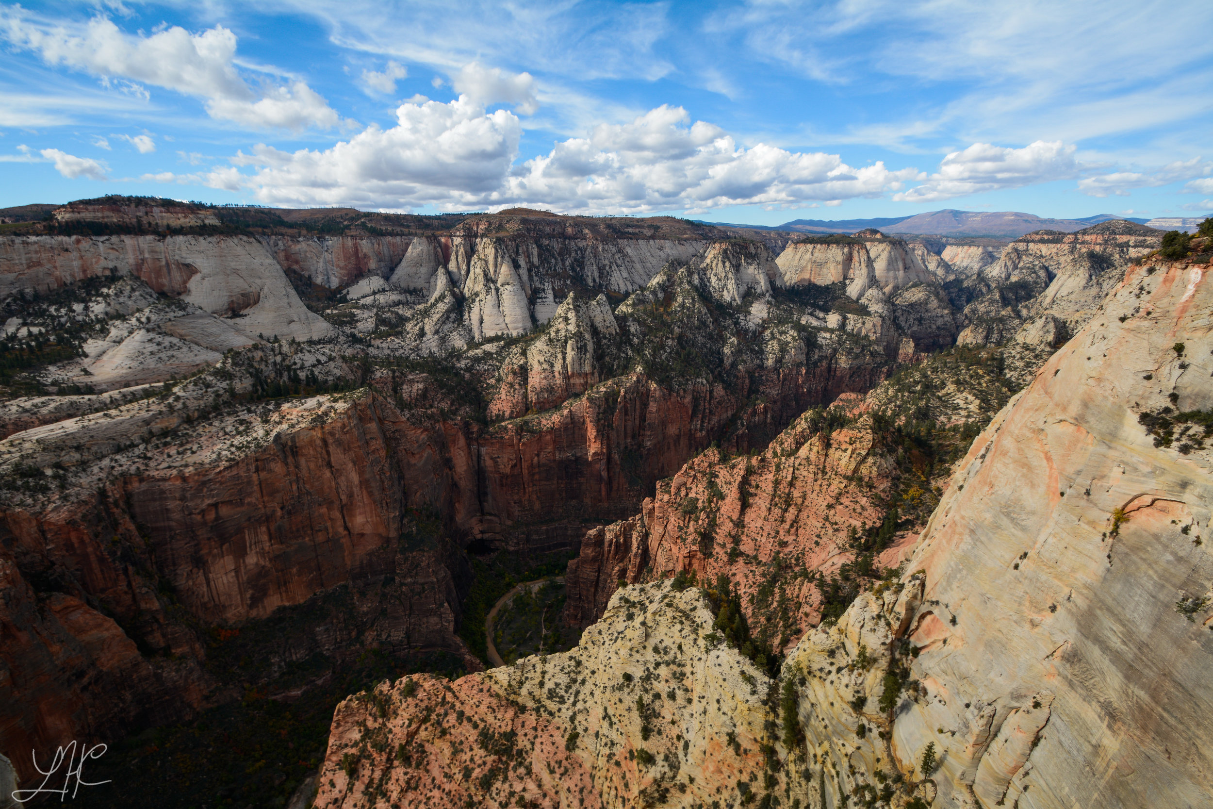 Looking NW from Observation Point, Zion National Park