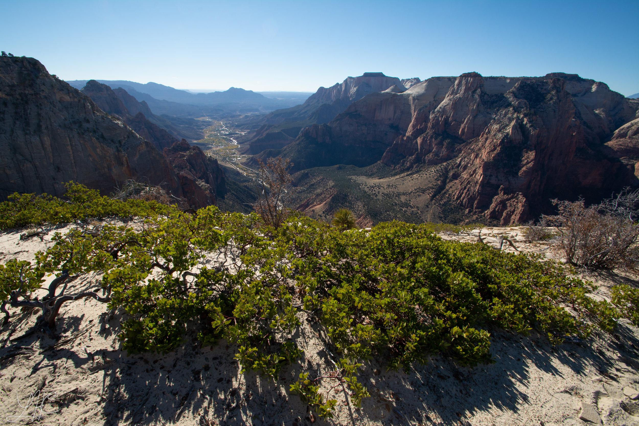 Mountain of the Sun Summit, Zion National Park