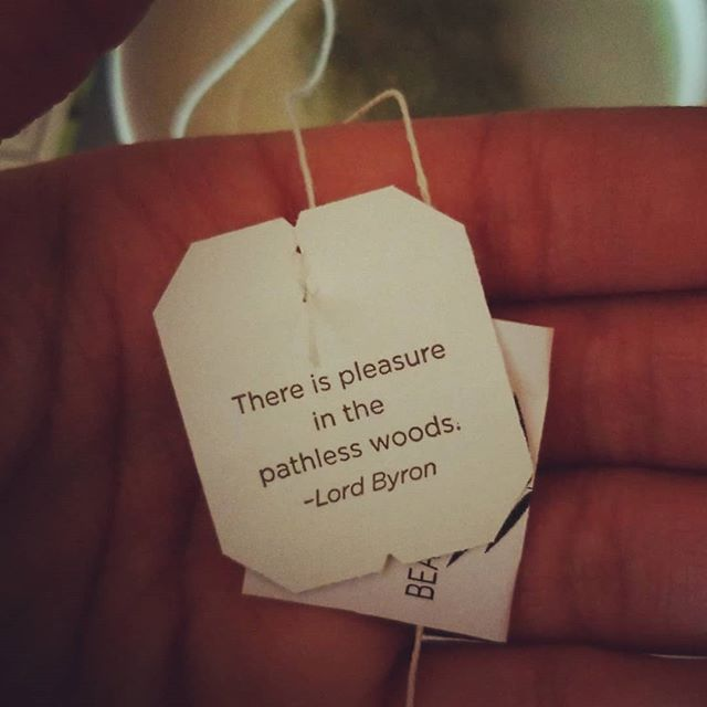 There is pleasure in the payless woods - Lord Byron . Go get some fresh air and relax in nature.  #pleasureinthewoods #pathless #pathlesstraveled #lordbyron #traditionalmedicinals #teaquote #peaceinnature
