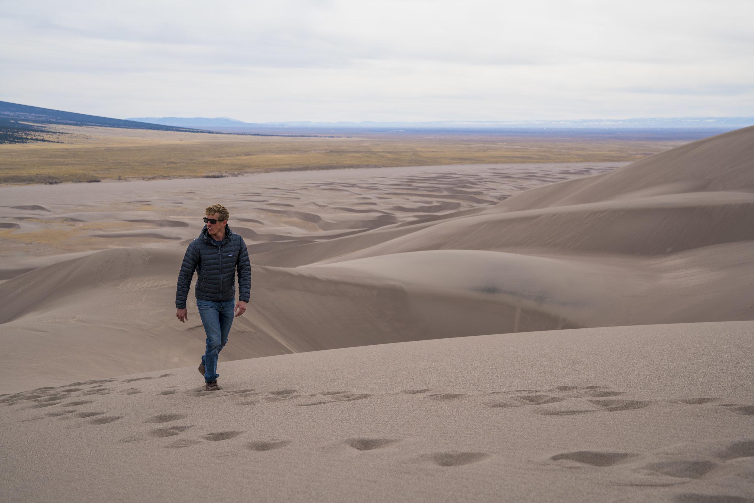 Dunes Feral 26.jpg