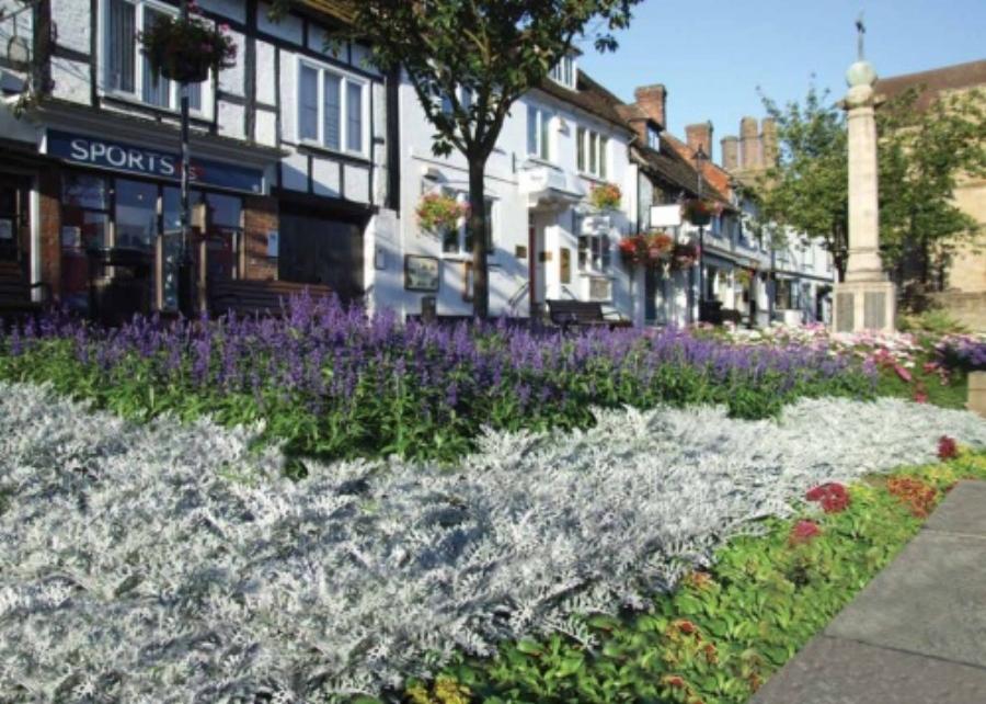 east-grinstead-in-bloom.jpg