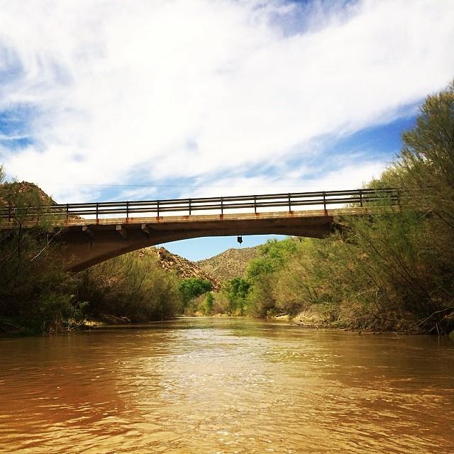 The bridges of Maricopa County