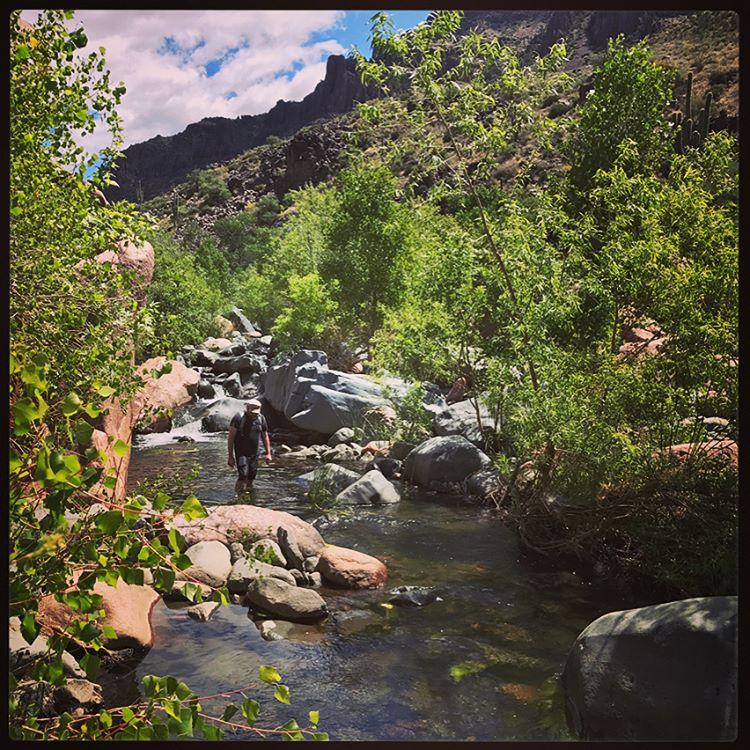 Deception in the creek