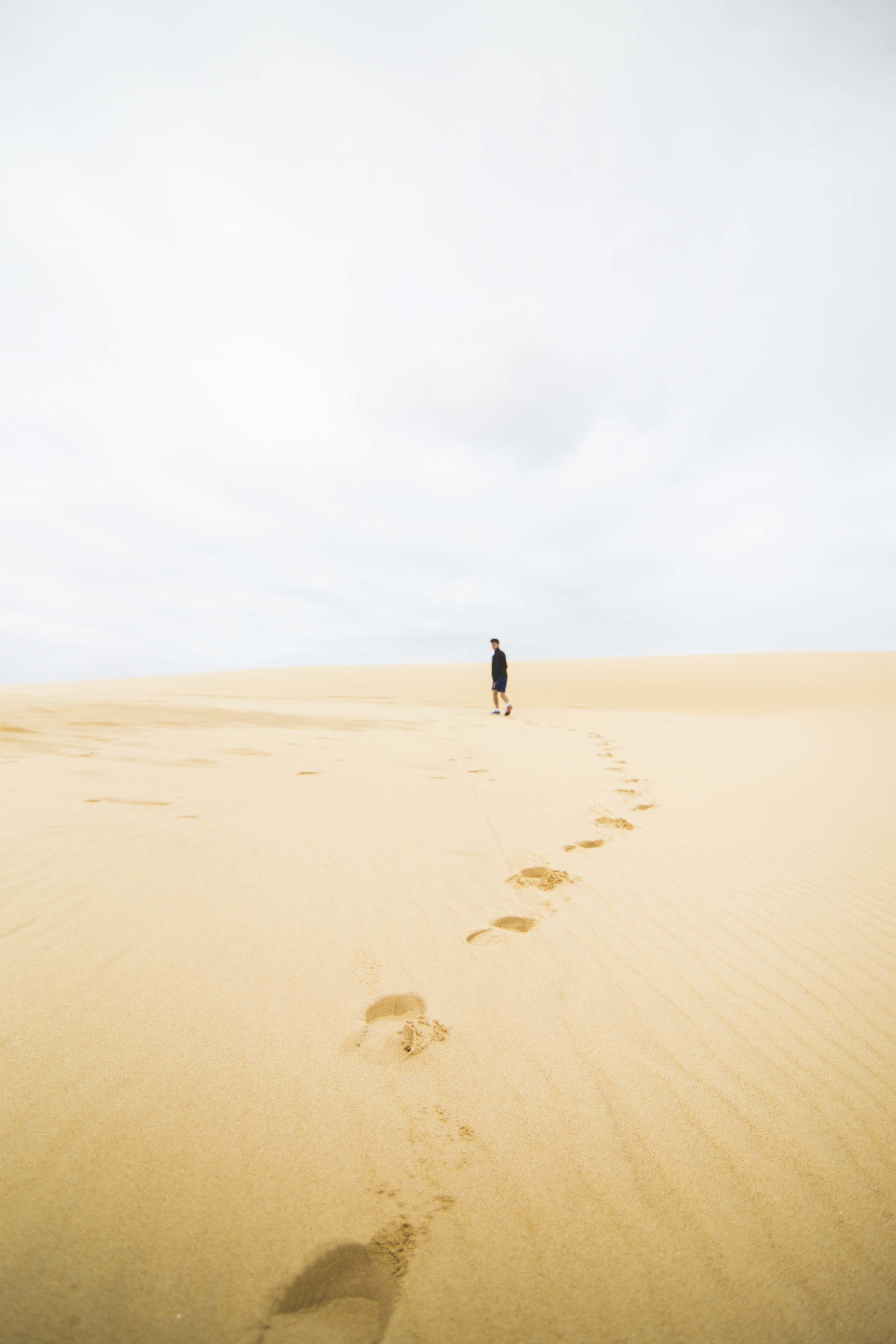 Sand Dunes near Stockton. Photo: Marine Raynard