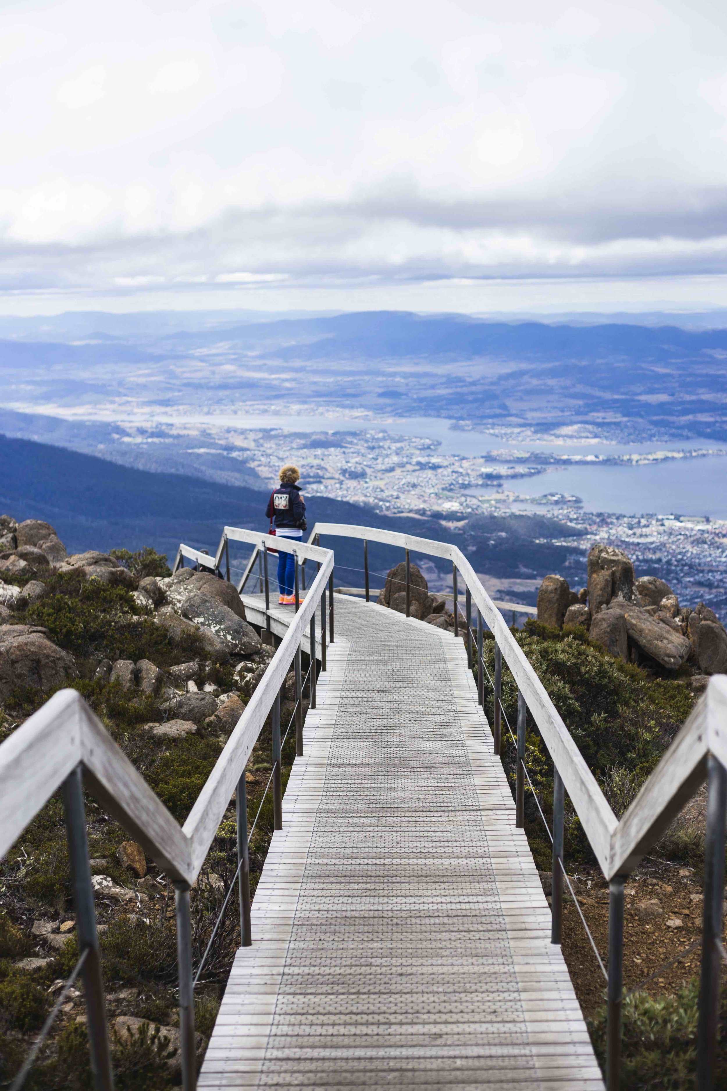 View from the walk at Mount Wellington. Photo: Marine Raynard