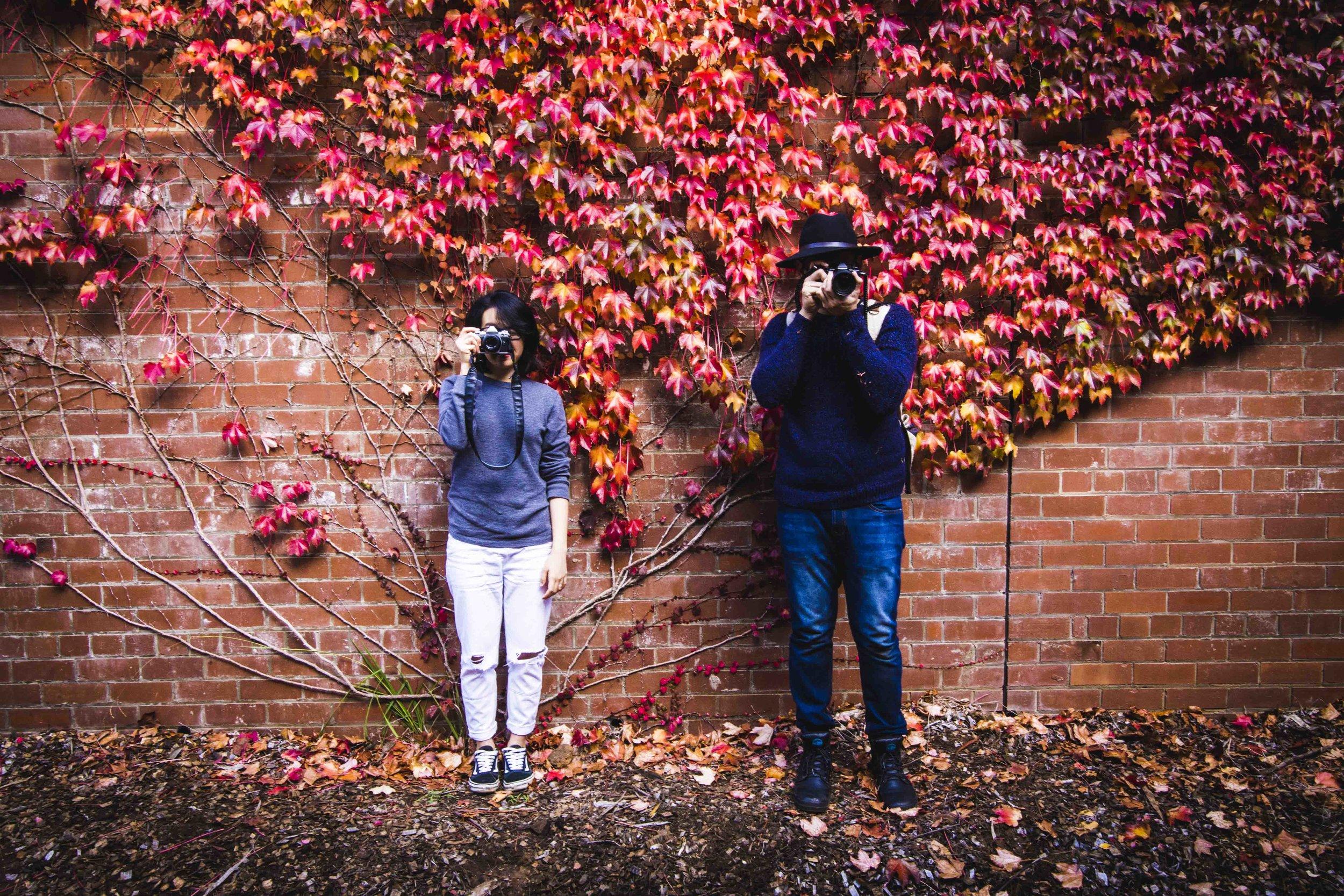 Autumn in Mount Wilson. Photo: Marine Raynard