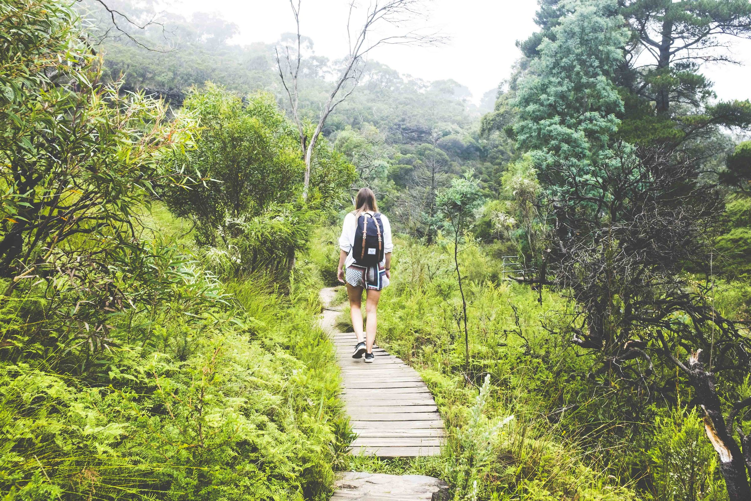 The Charles Darwin Walk. Photo: Marine Raynard