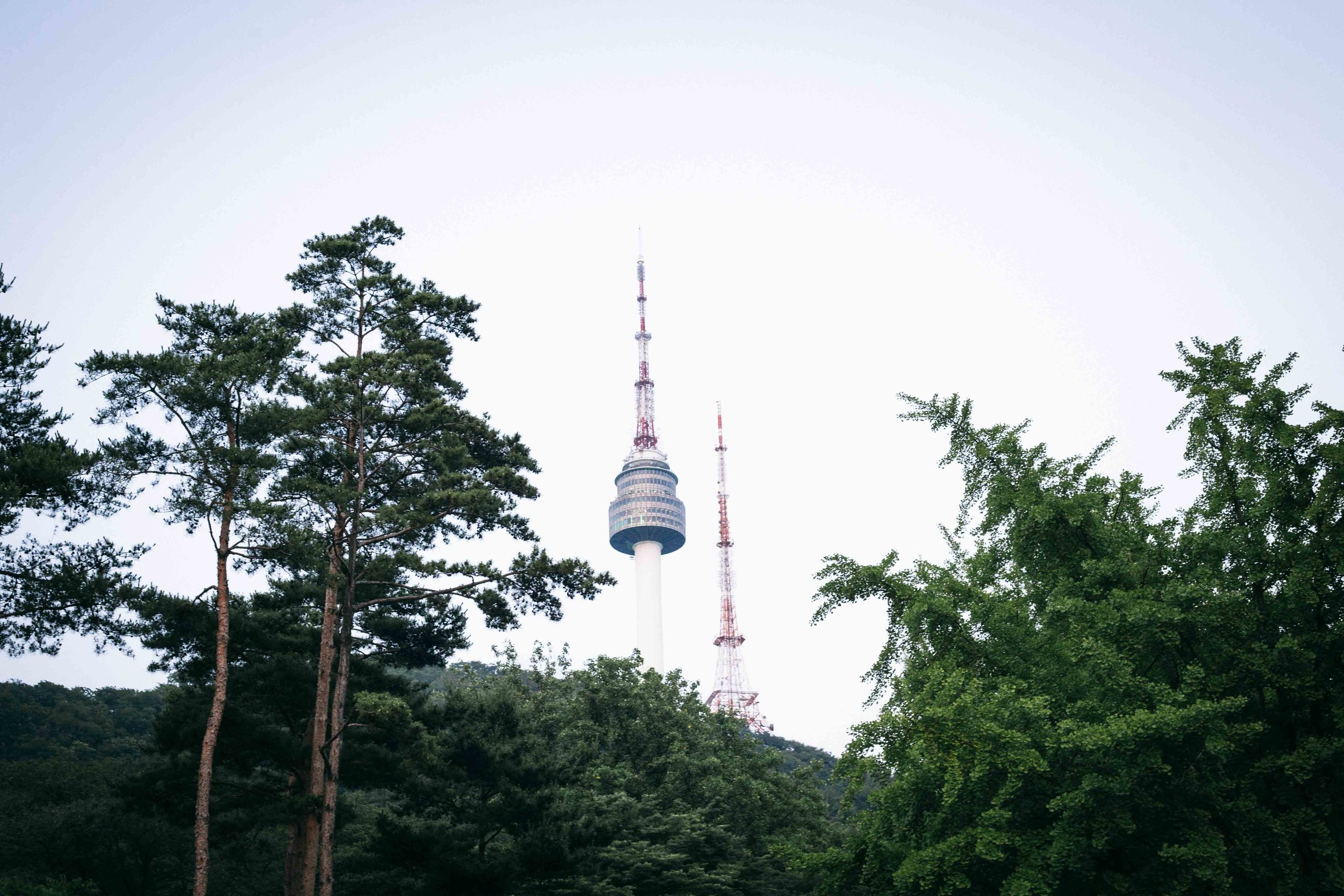 The Seoul Tower