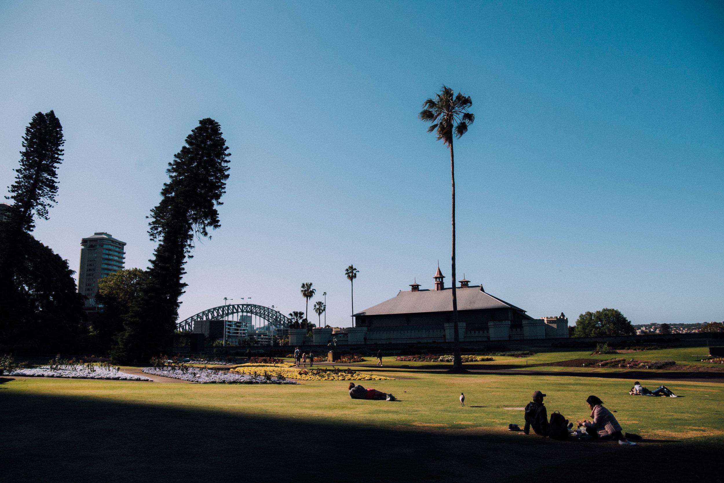 The Sydney Botanic Gardens - a nice place to run!