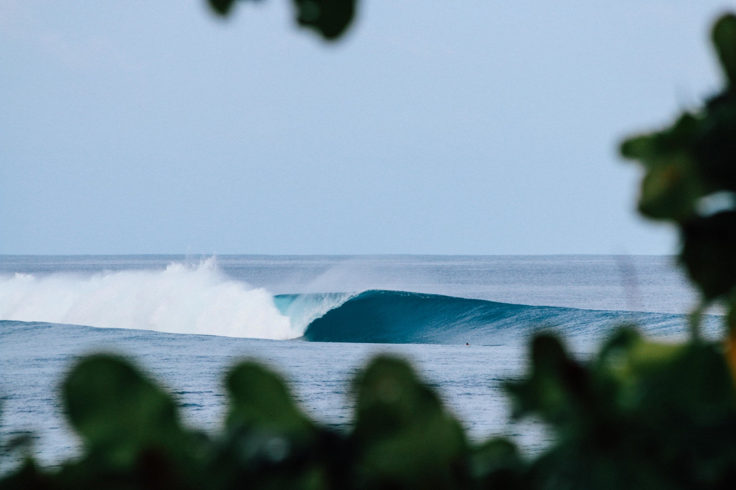 Maldives hold world-class waves.
