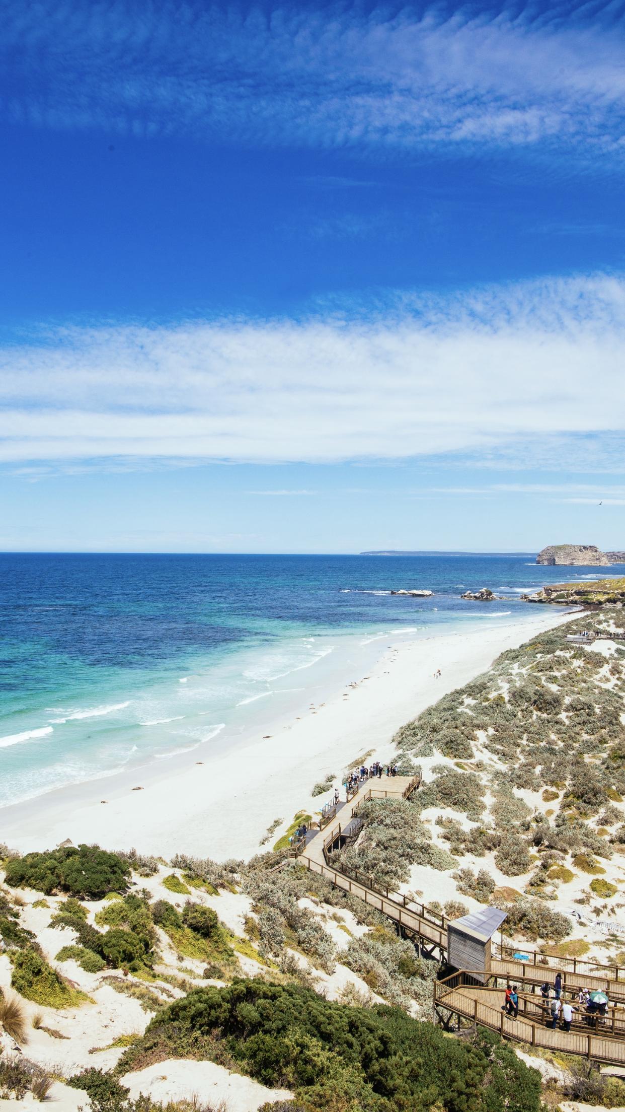 seal-bay-kangaroo-island.PNG