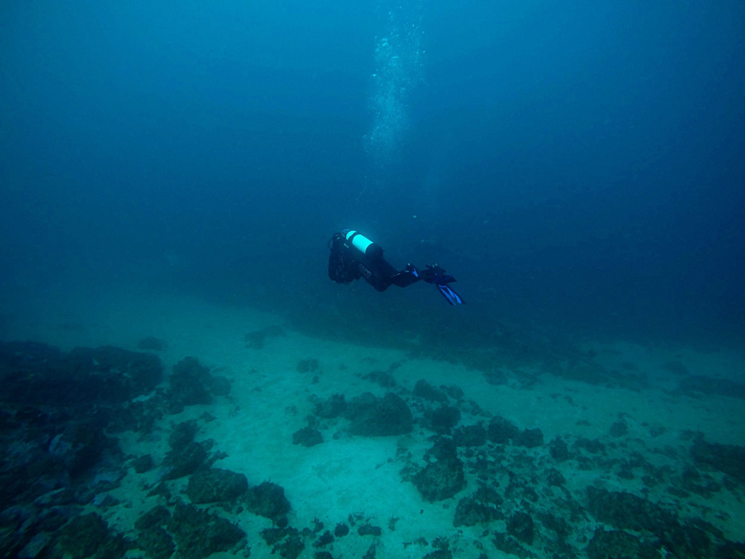 Buoyant space, self contained - 30 metres below (100 ft) South Solitary Island, off Coffs Harbour, NSW, 2014