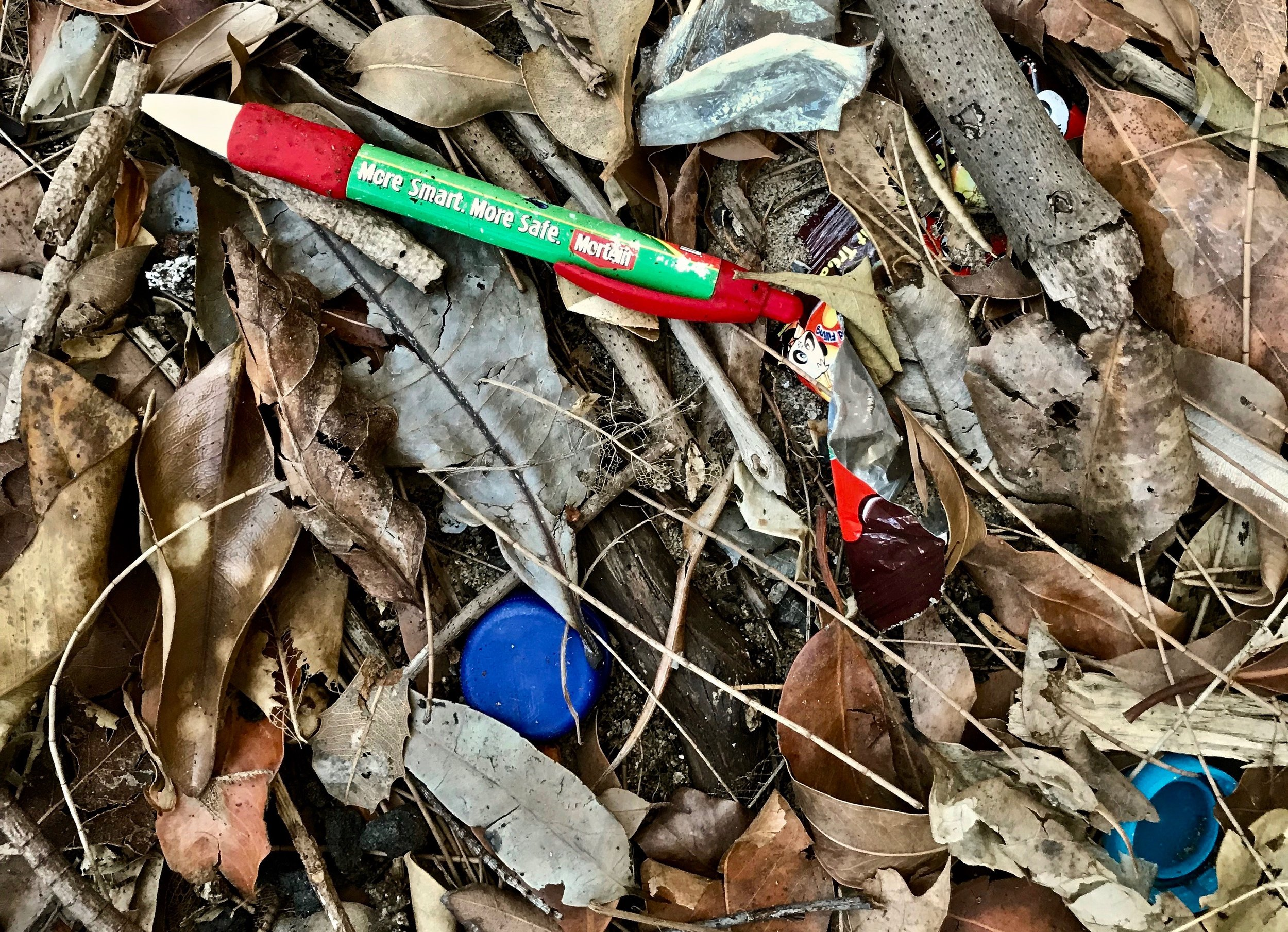 Wicked ironies - 'more smart? more safe? Mortein!'. Lane Cove, Sydney. Huge amounts of micro plastics found beneath washed up natural debris. Never assume a site that appears at first clear is. Rummage a little and you'll discover that a lot more lethal plastics lie beneath.