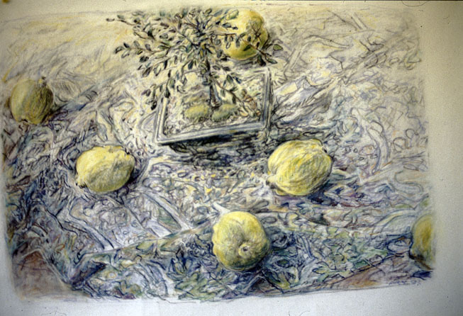 Quinces with Chinese Elm¸ 1997, pastel & charcoal on rice paper, 57 x 82 cm