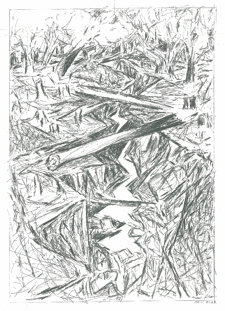 Eroded gully 1, 1981, offset print (limited edition),  20 x 28 cm