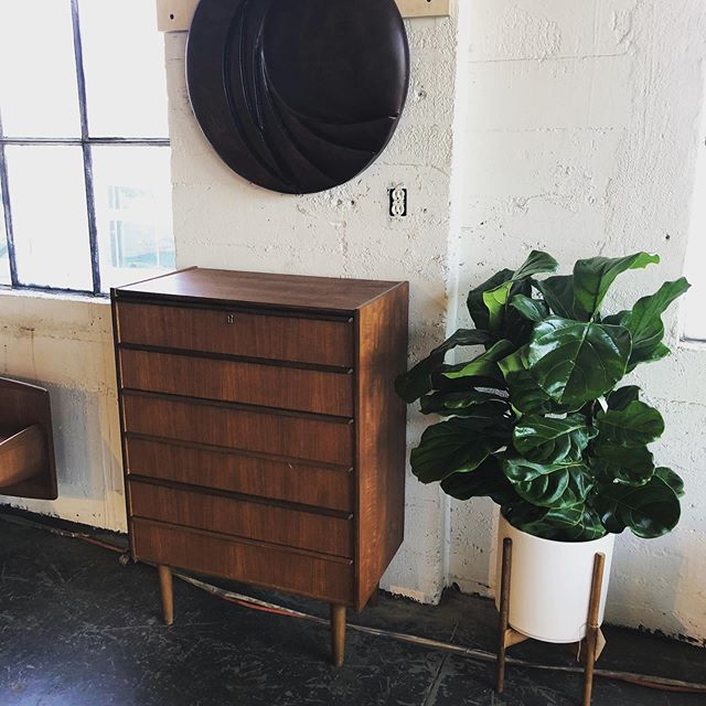 Did you know that we have a pop-up over @thegoodmod? Well we do and you should go check it out and see what insane custom furniture and refinished MCM treasures you might find while you're there! 🌵📻🌿