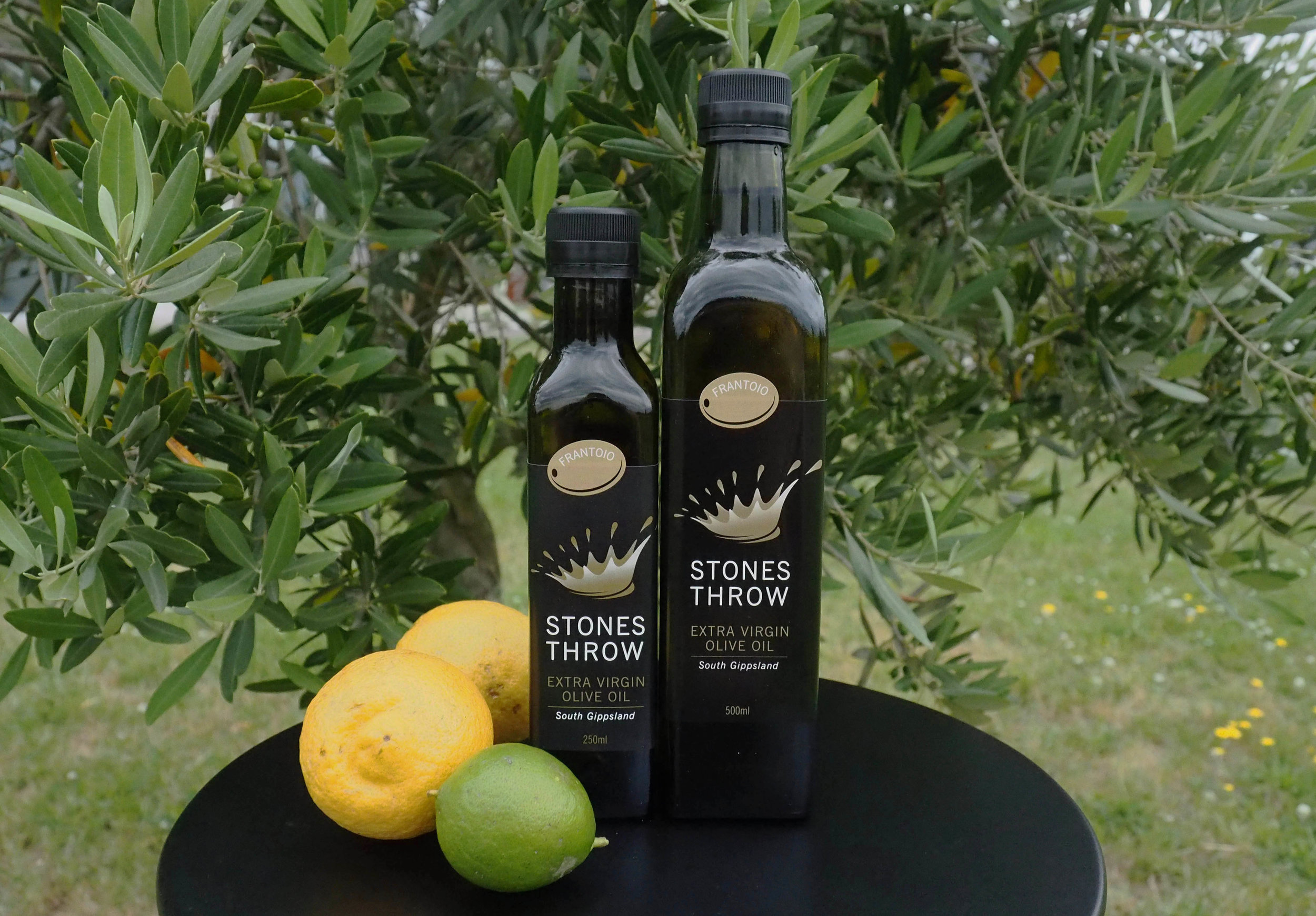FRANTOIO  Frantoio is a famous Tuscan olive variety. Our 2017 is grassy green in colour, fresh and finely balanced with a spicy citrus flavour and a warm, lasting finish.