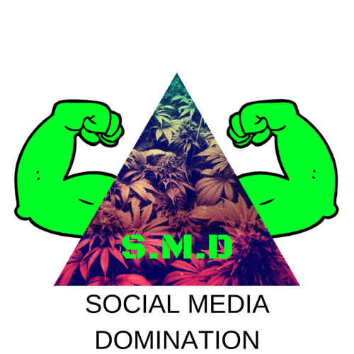 Social_Media_Domination(2).png
