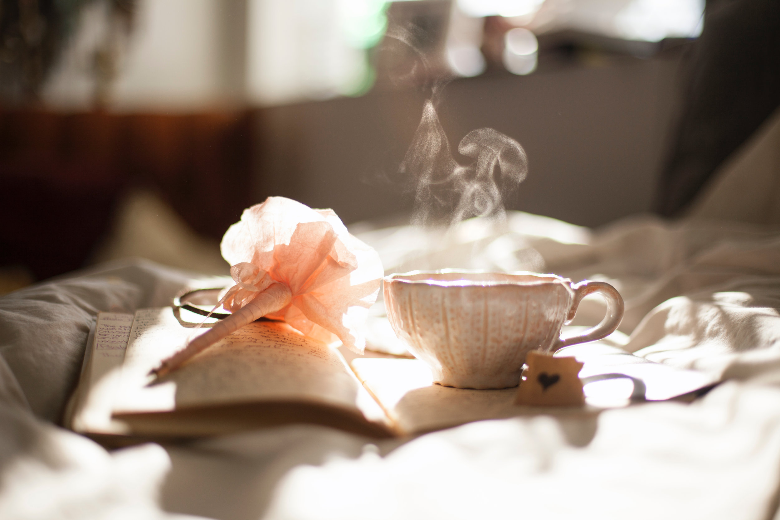 Journal and tea by Carli Jeen