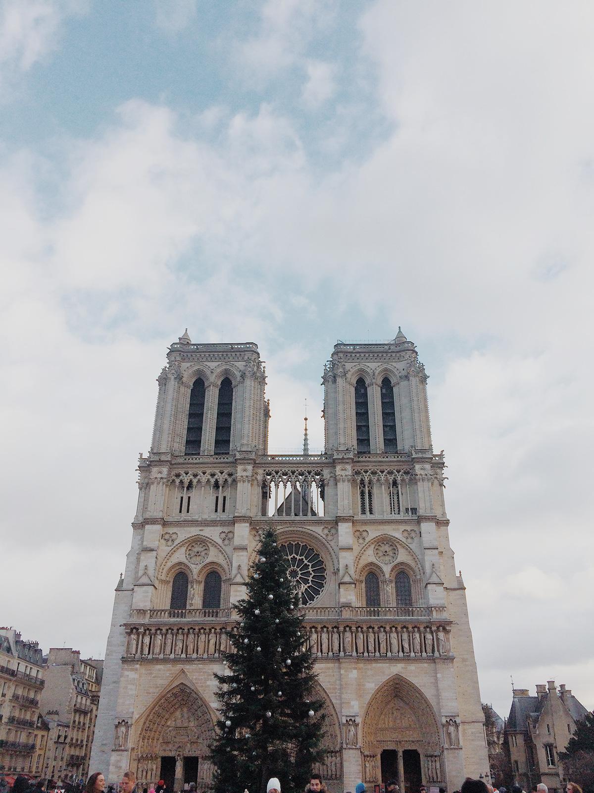 Notre Dame - Paris, Black Dame