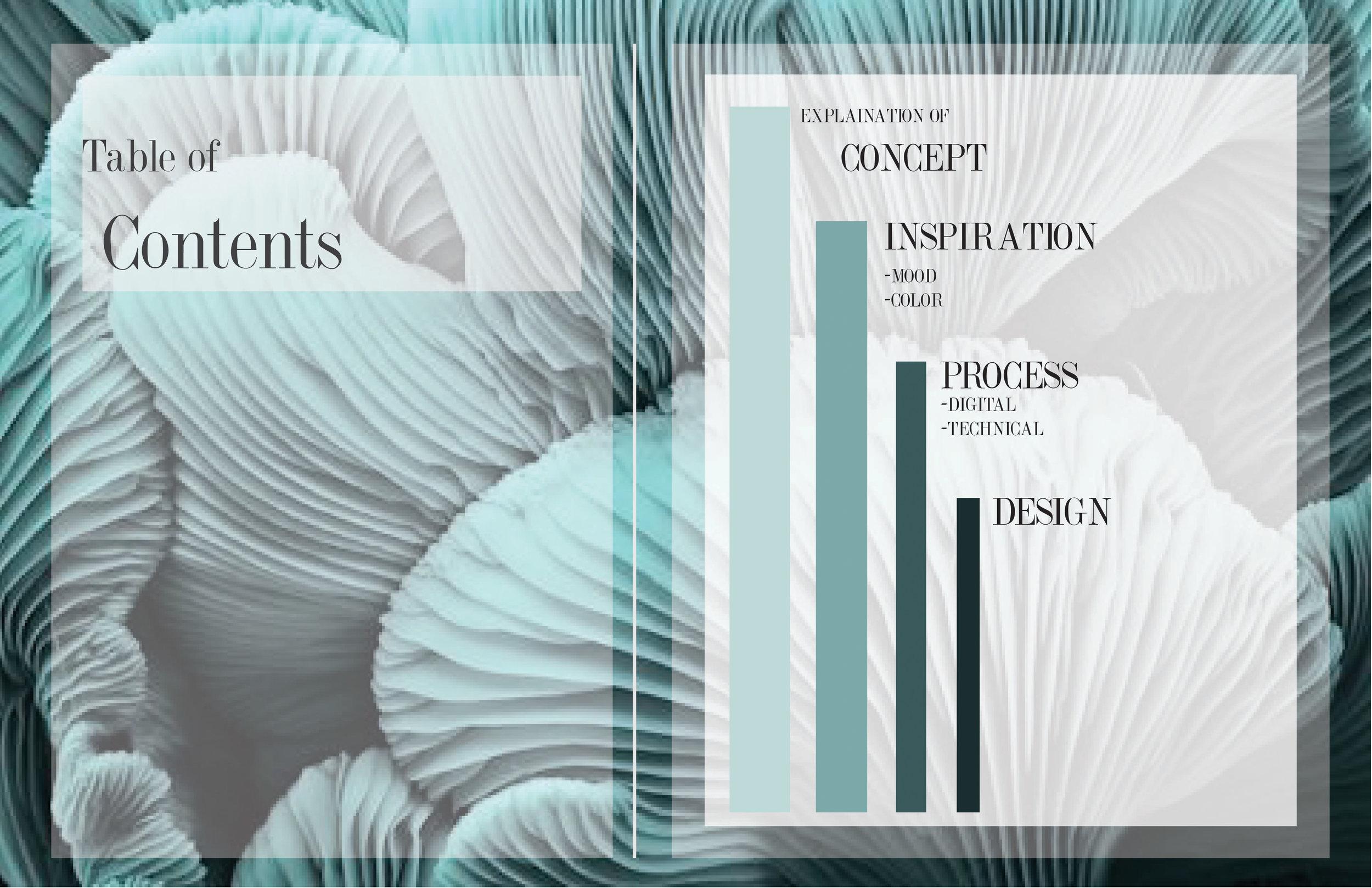 Process Book-02.jpg