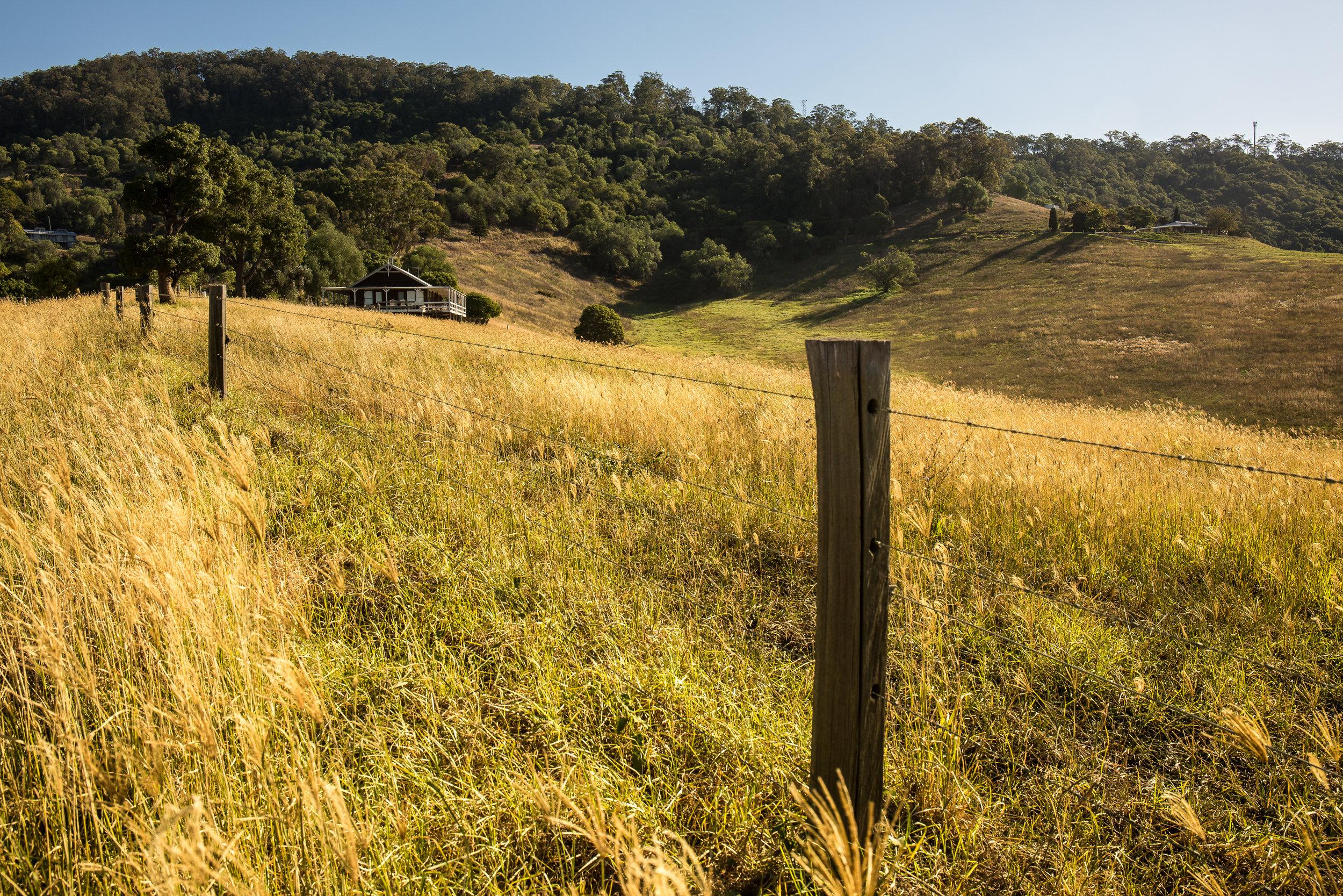 Hunter Valley Blog Post (27 of 39).jpg