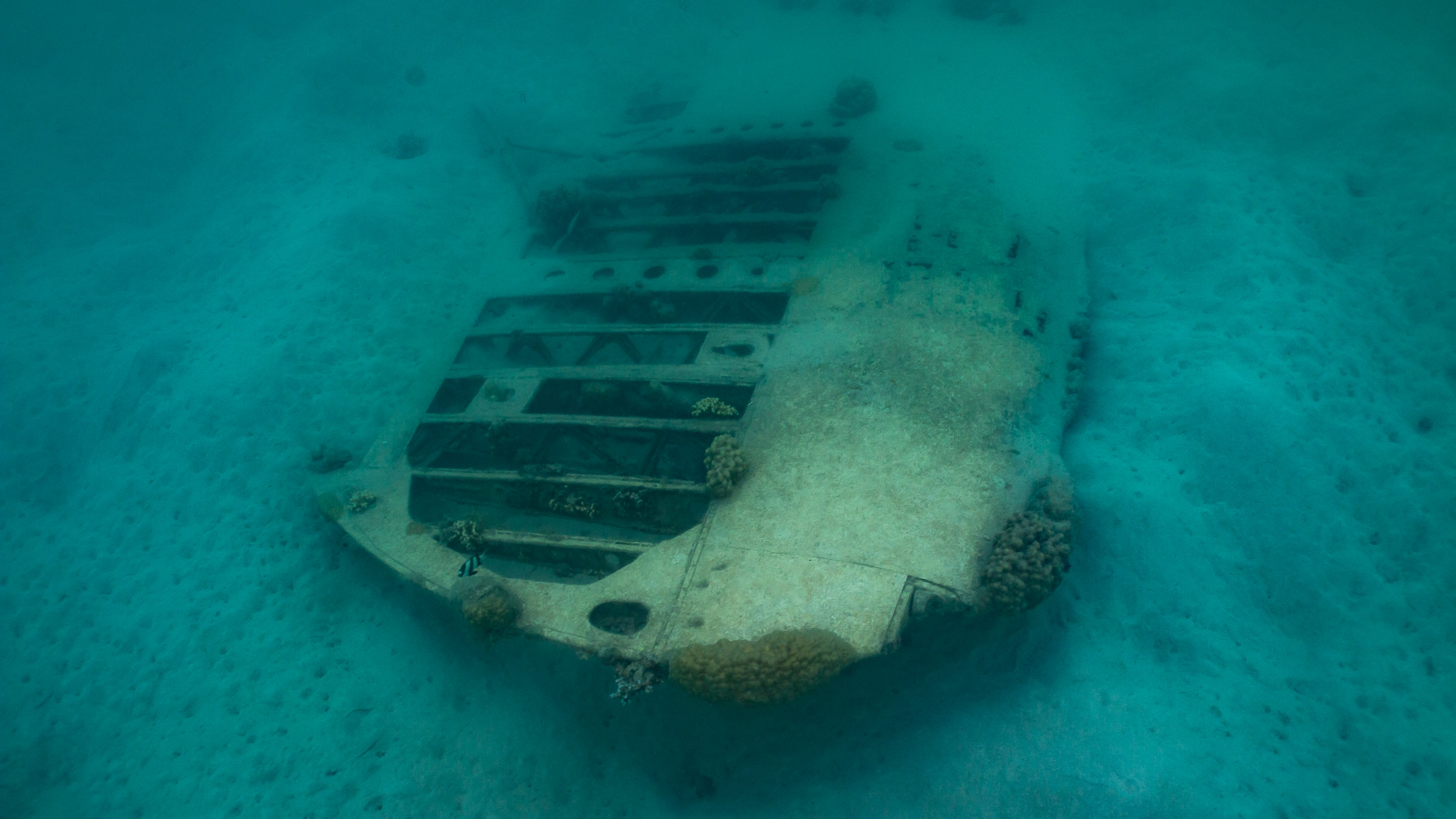 Photograph a World Ware 2 Plane Wreck in water (Wing)