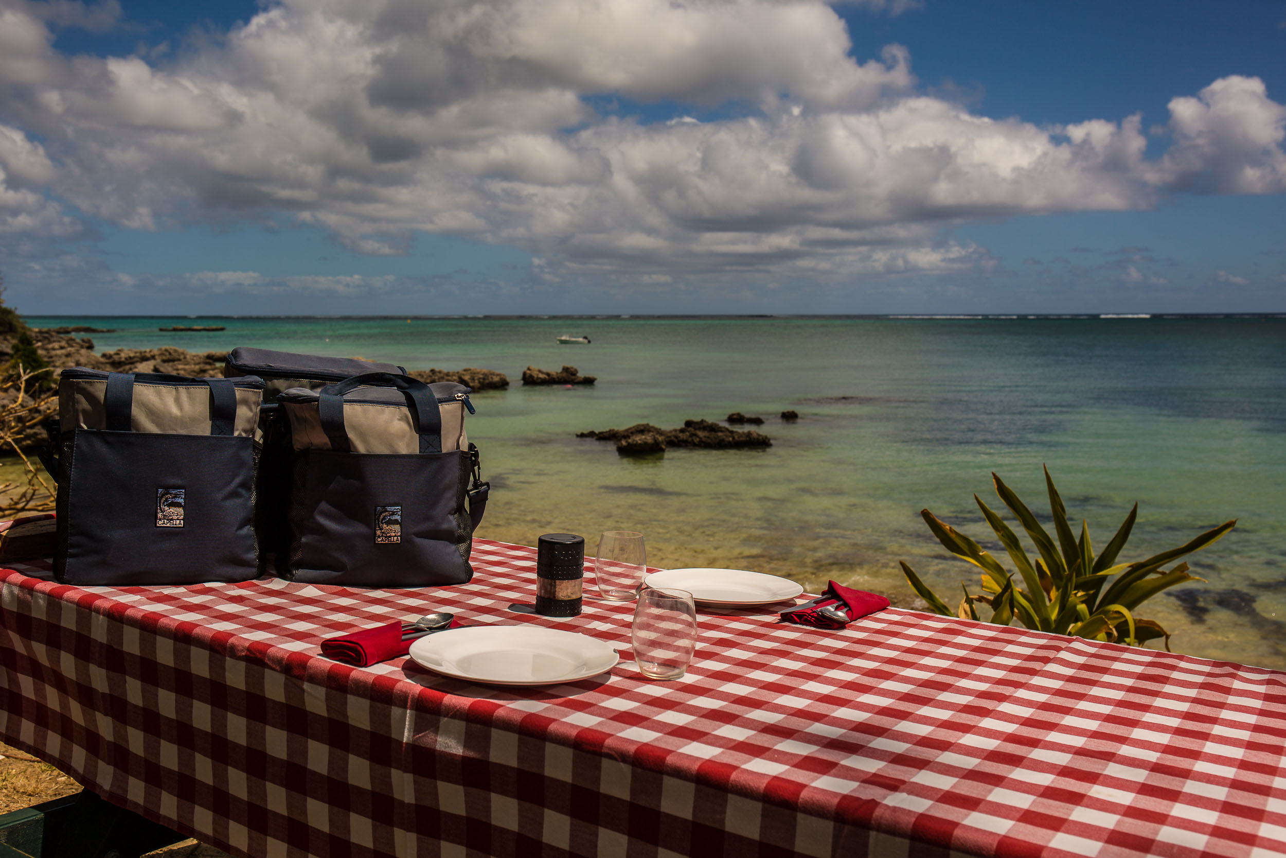 Picnic Lunch with all the trappings, Capella Lodge, Lord Howe Island