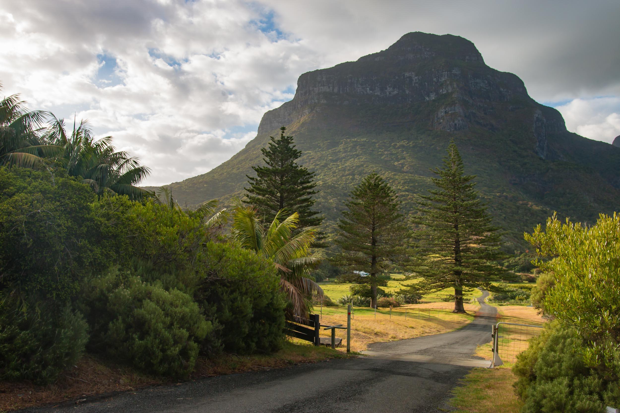 Capella Lodge Lord Howe Island (29 of 50).jpg