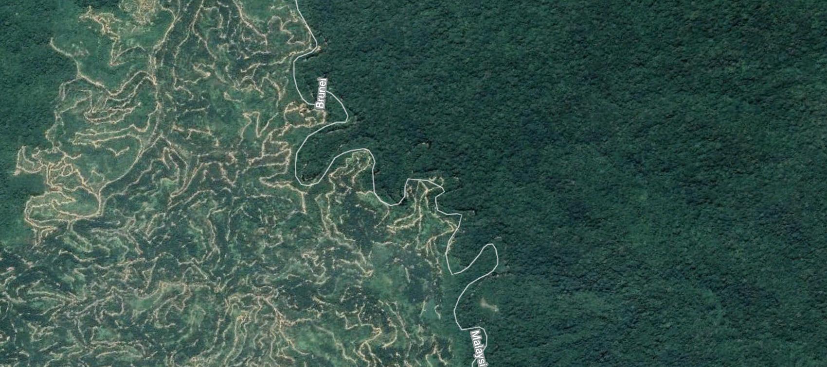 Ulu Temburong Google Earth 2.jpg