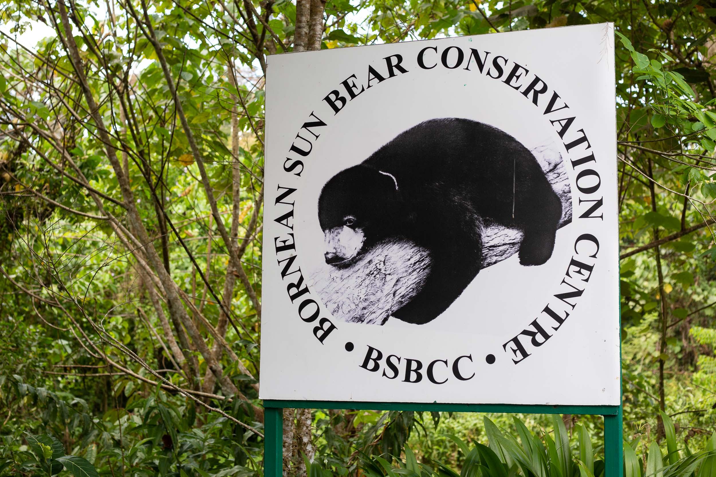 Bornean Sun Bear Conservation Centre, Sepilok, Borneo, Malaysia.jpg