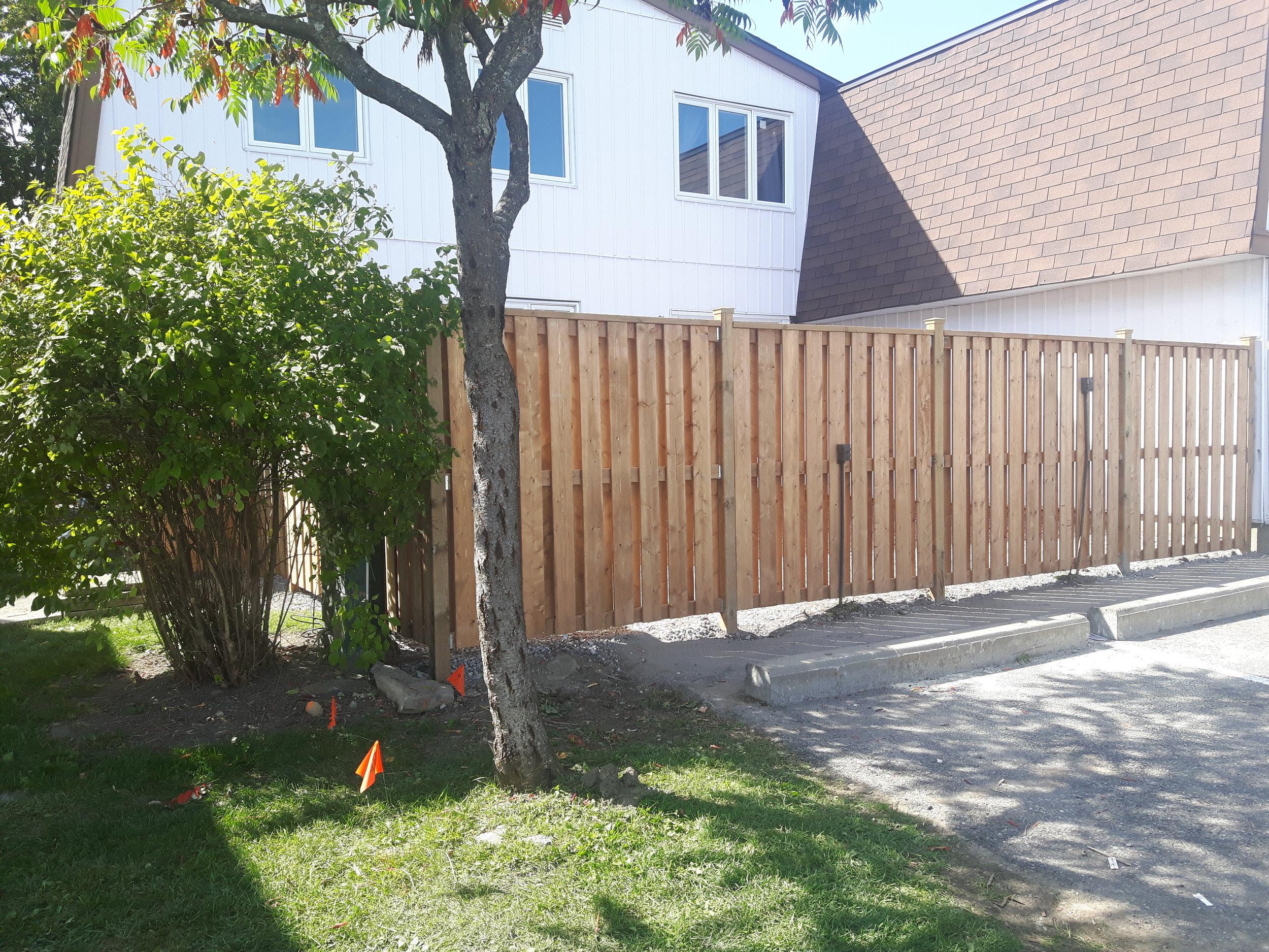 Lee Blair Lot 52 -PT fence 1.jpg