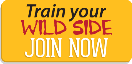 Join the Zoo Health Club of Concord NH now