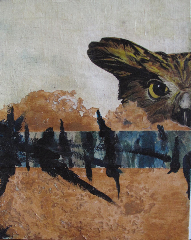 Owl River