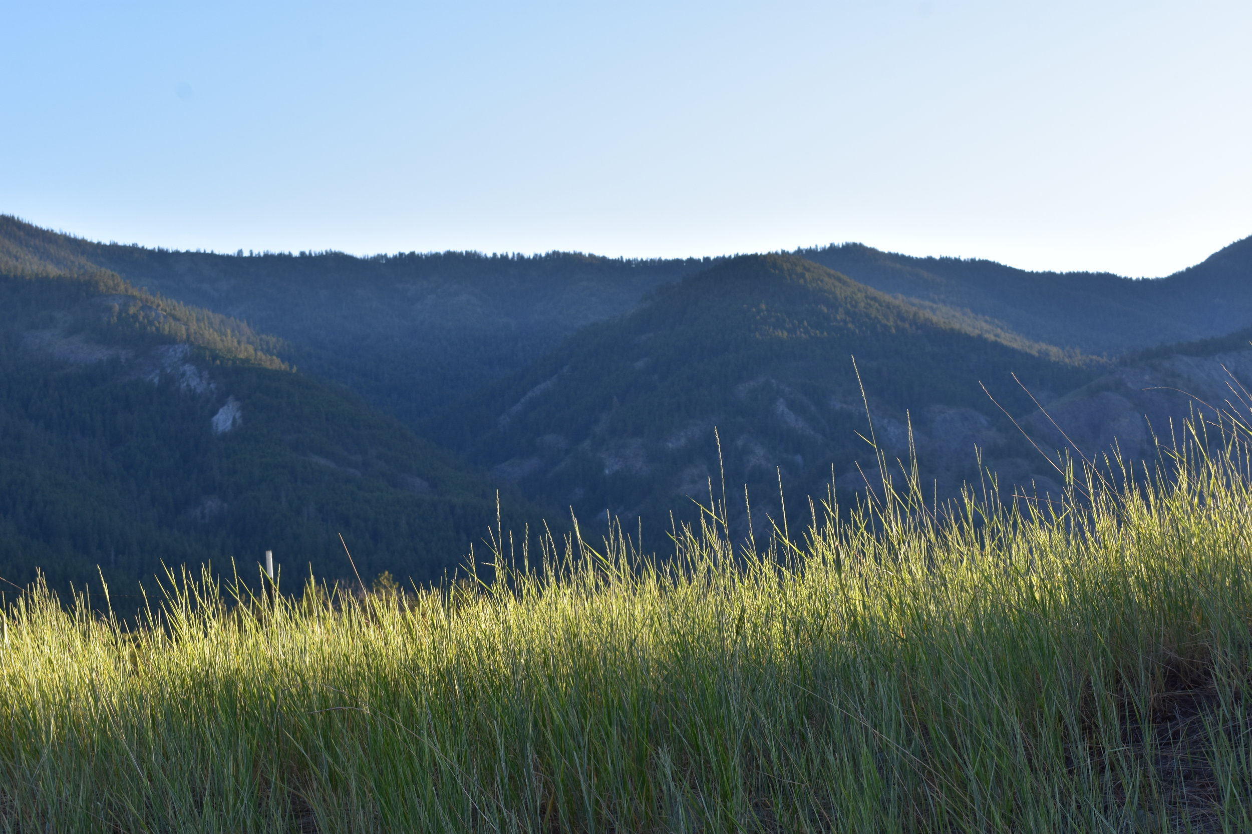 Big Valley_June2018_AlyssaJumars1.JPG