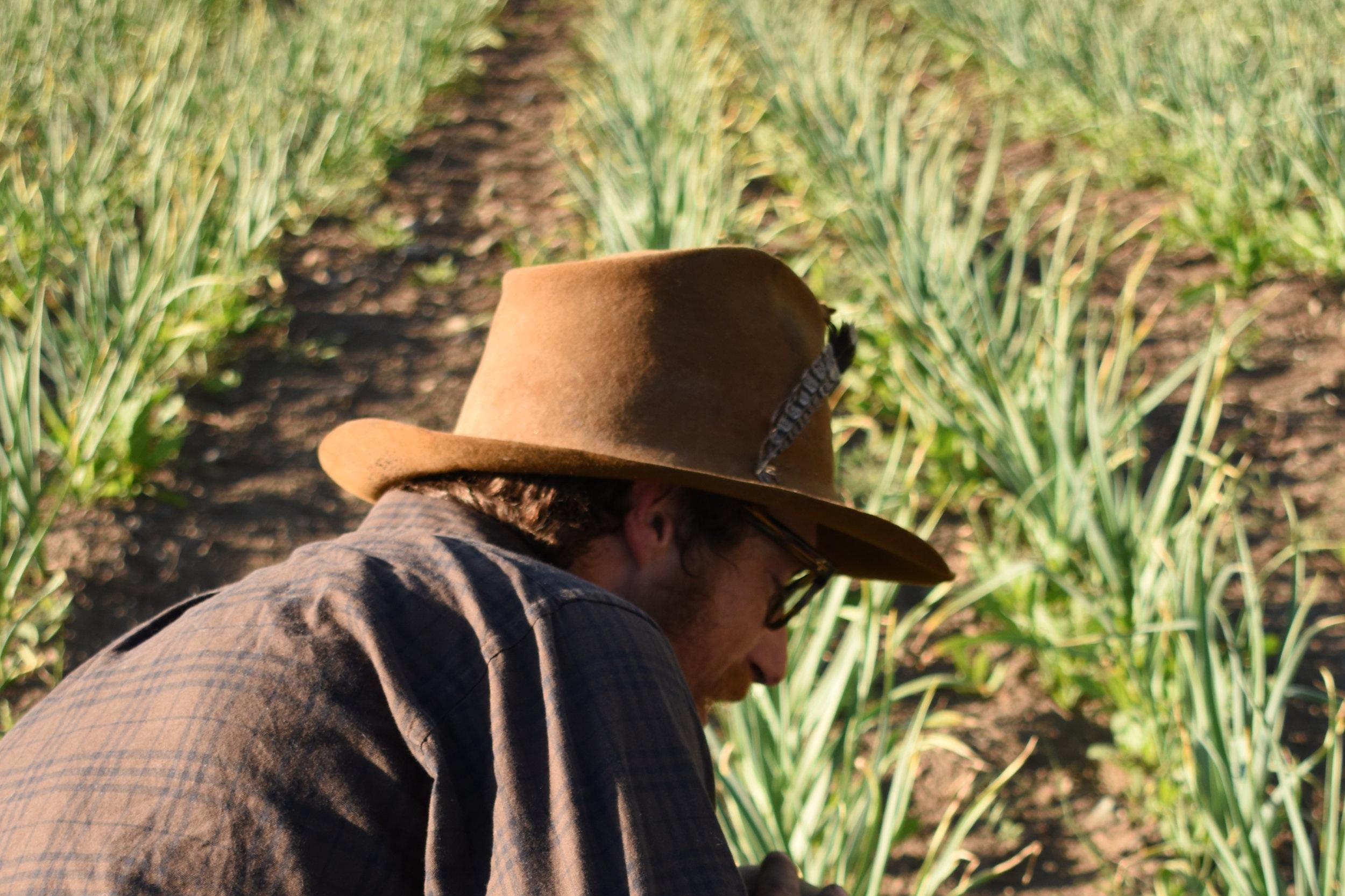 Spring_2018_MethowConservancyAgriculture_AlyssaJumars 190.JPG
