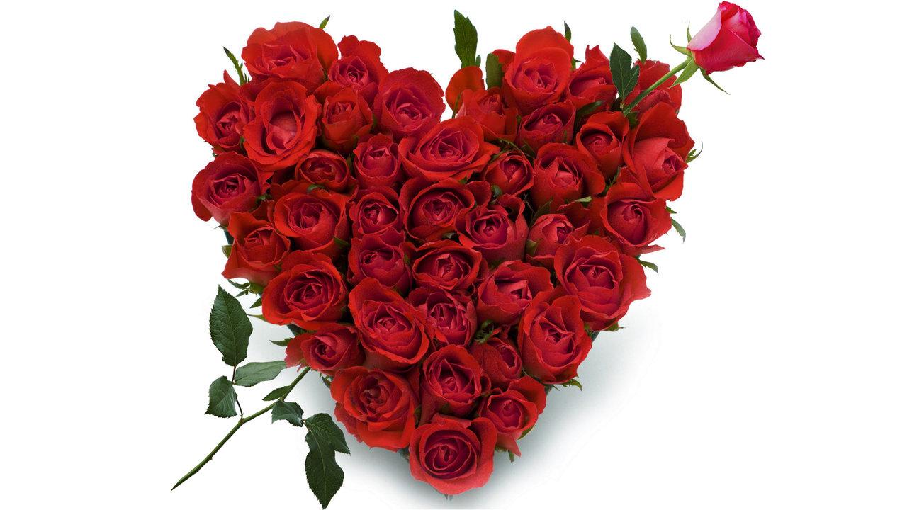 roses_heart__element_of_magic_for_love.jpg