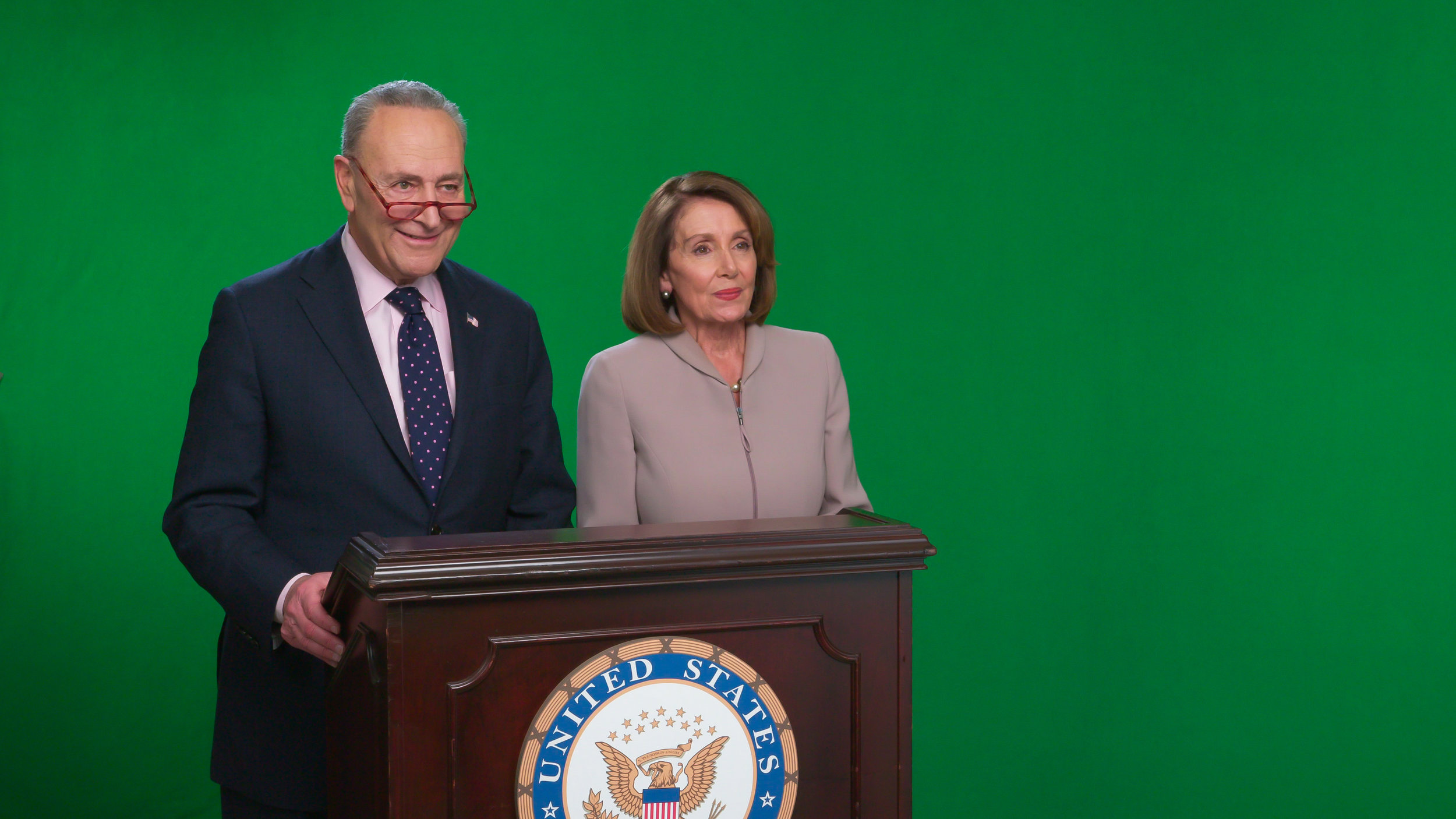 Speaker Pelosi and Leader Schumer